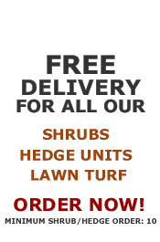 Free shipping on shrubs, hedge units & lawn turf